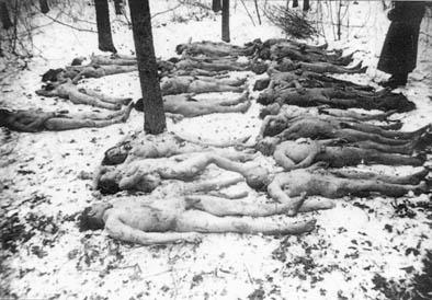 Połowce. 26 pomordowanych Polaków przez ludobójców zOUN-UPA 16.01.1944 r. – odnalezieni przypadkowo wlesie.